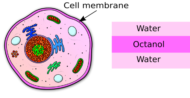 blog-cell